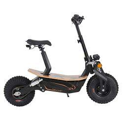 Scooter eléctrica todoterreno de Sxt Monster